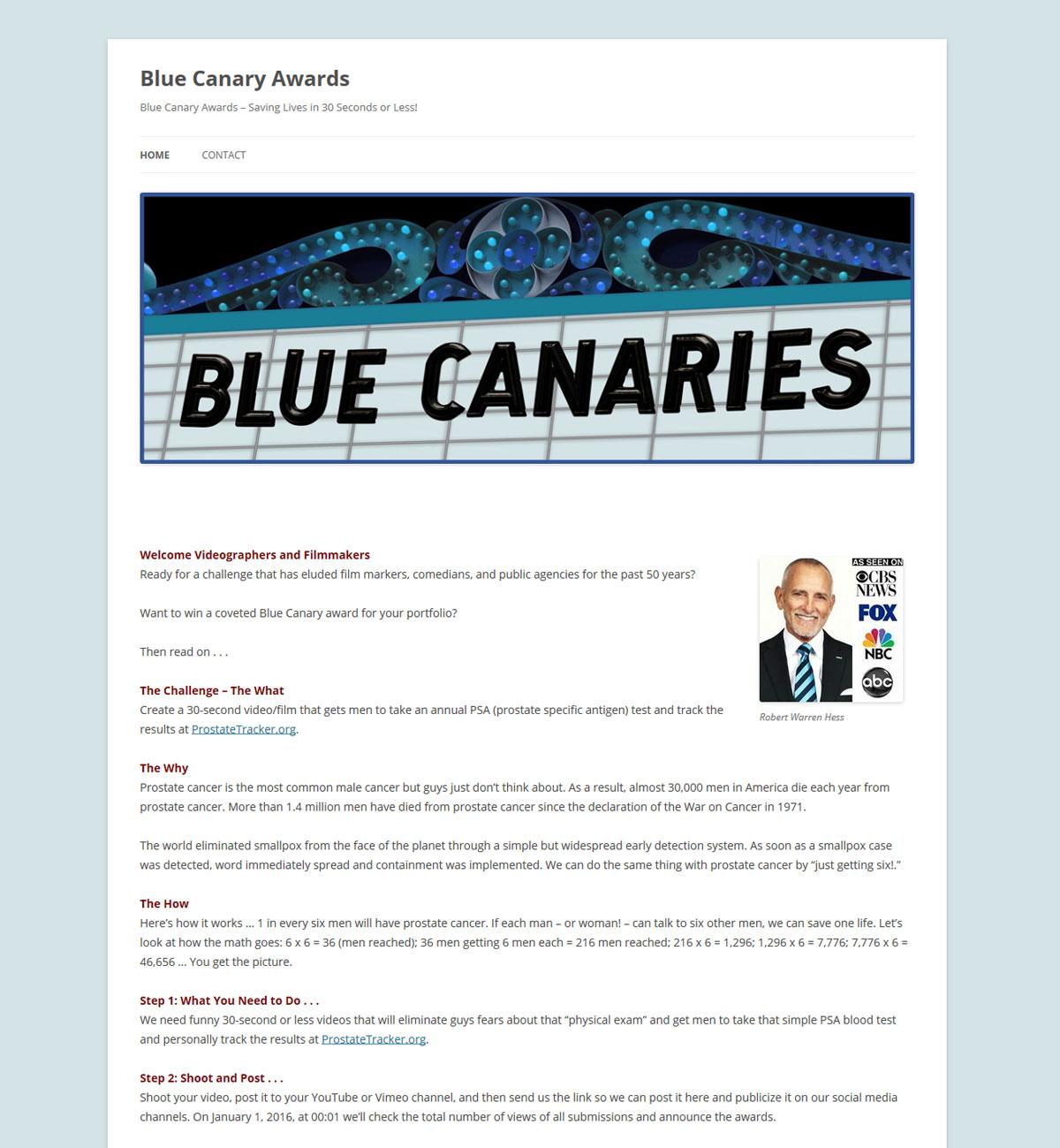 bluecanaries.com website design