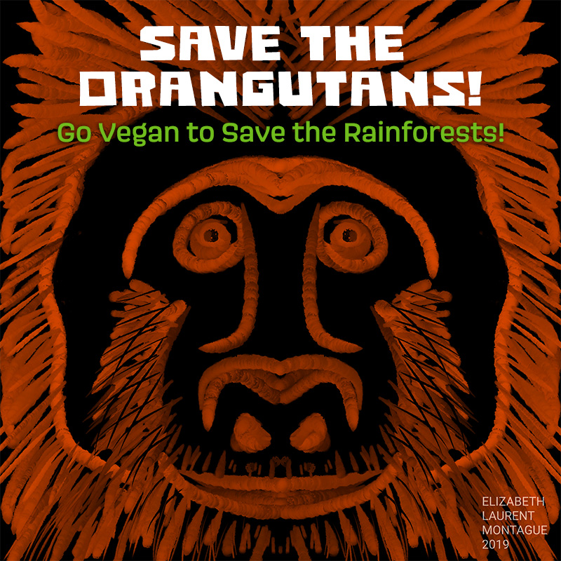 Save the Orangutans!